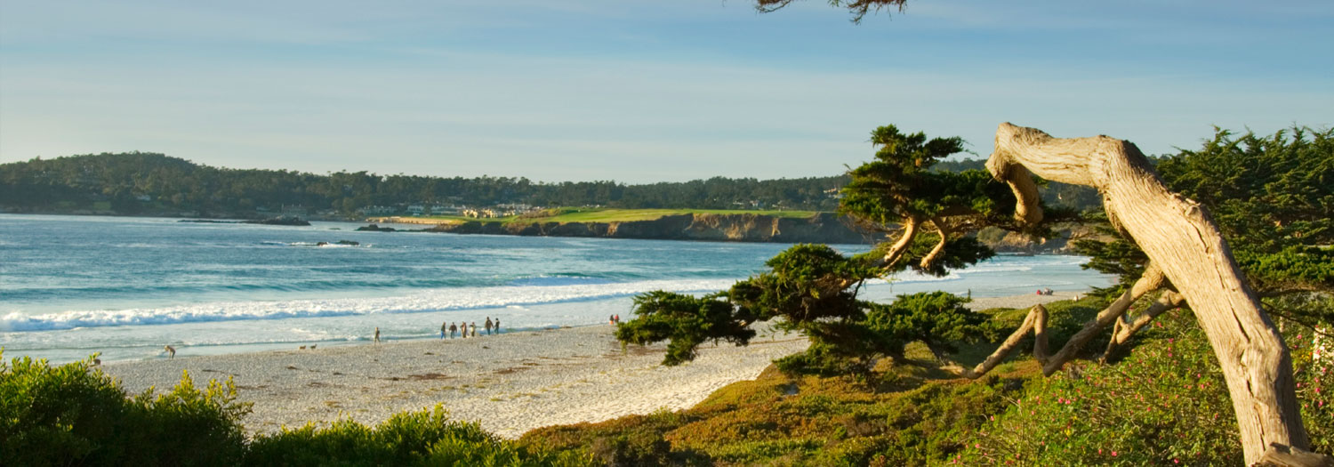 Carmel by the sea shopping dining beaches for Best beach in monterey ca